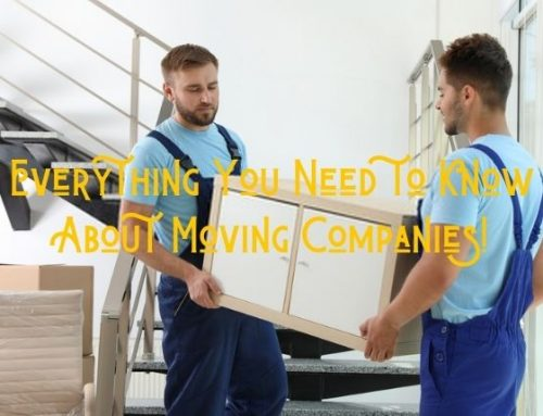 Everything You Need to Know About Moving Companies!